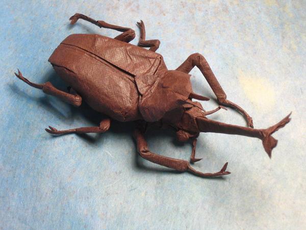 insecte origami feuille papier 10 Insectes réalistes en une feuille de papier