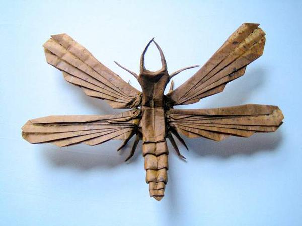 insecte origami feuille papier 13 Insectes réalistes en une feuille de papier geek divers bonus art