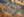 kowloon2 Kowloon Walled City  lieux information featured carte information