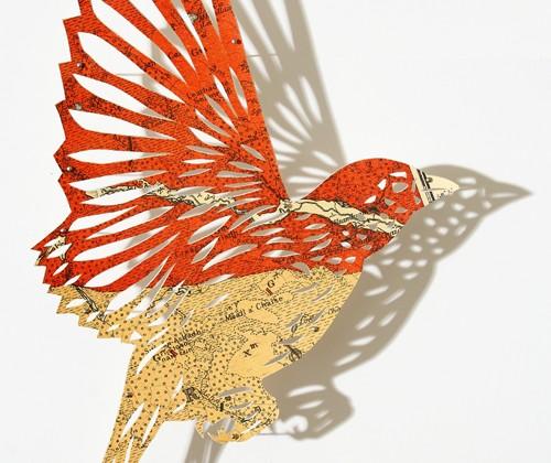 oiseau-cartographique-01