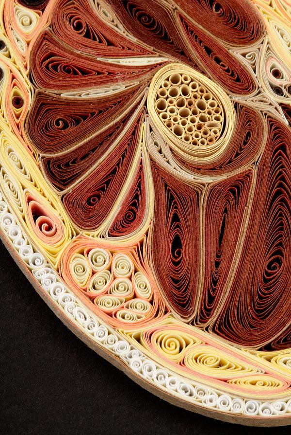 coupe anatomie papier 08 Coupes anatomiques en tranches de papier  technologie bonus art