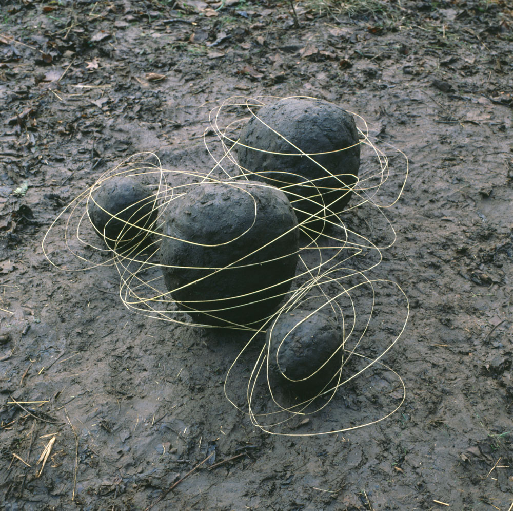 land art Andy Goldsworthy 05 Les oeuvres dans la nature dAndy Goldsworthy  photo bonus art