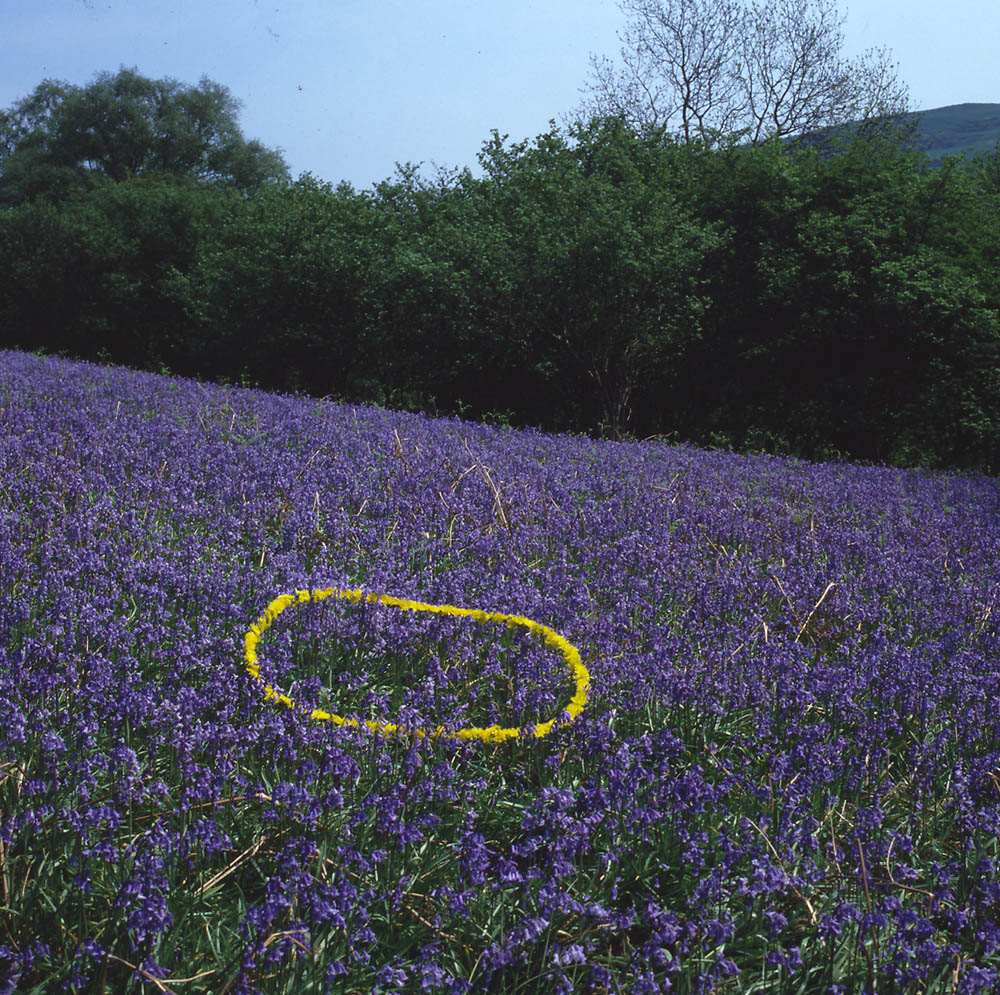 land art Andy Goldsworthy 06 Les oeuvres dans la nature dAndy Goldsworthy  photo bonus art