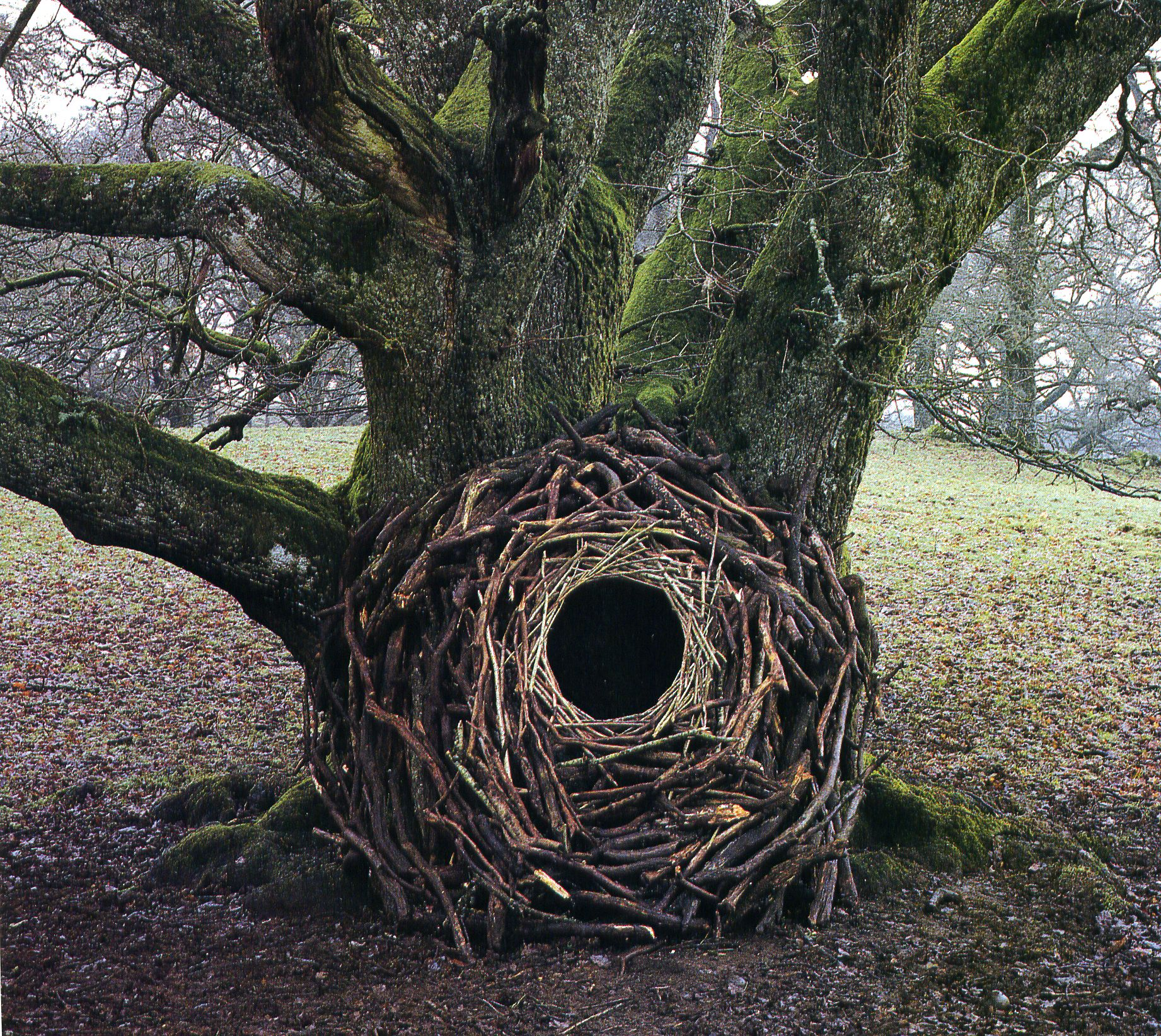 land art Andy Goldsworthy 10 Les oeuvres dans la nature dAndy Goldsworthy  photo bonus art