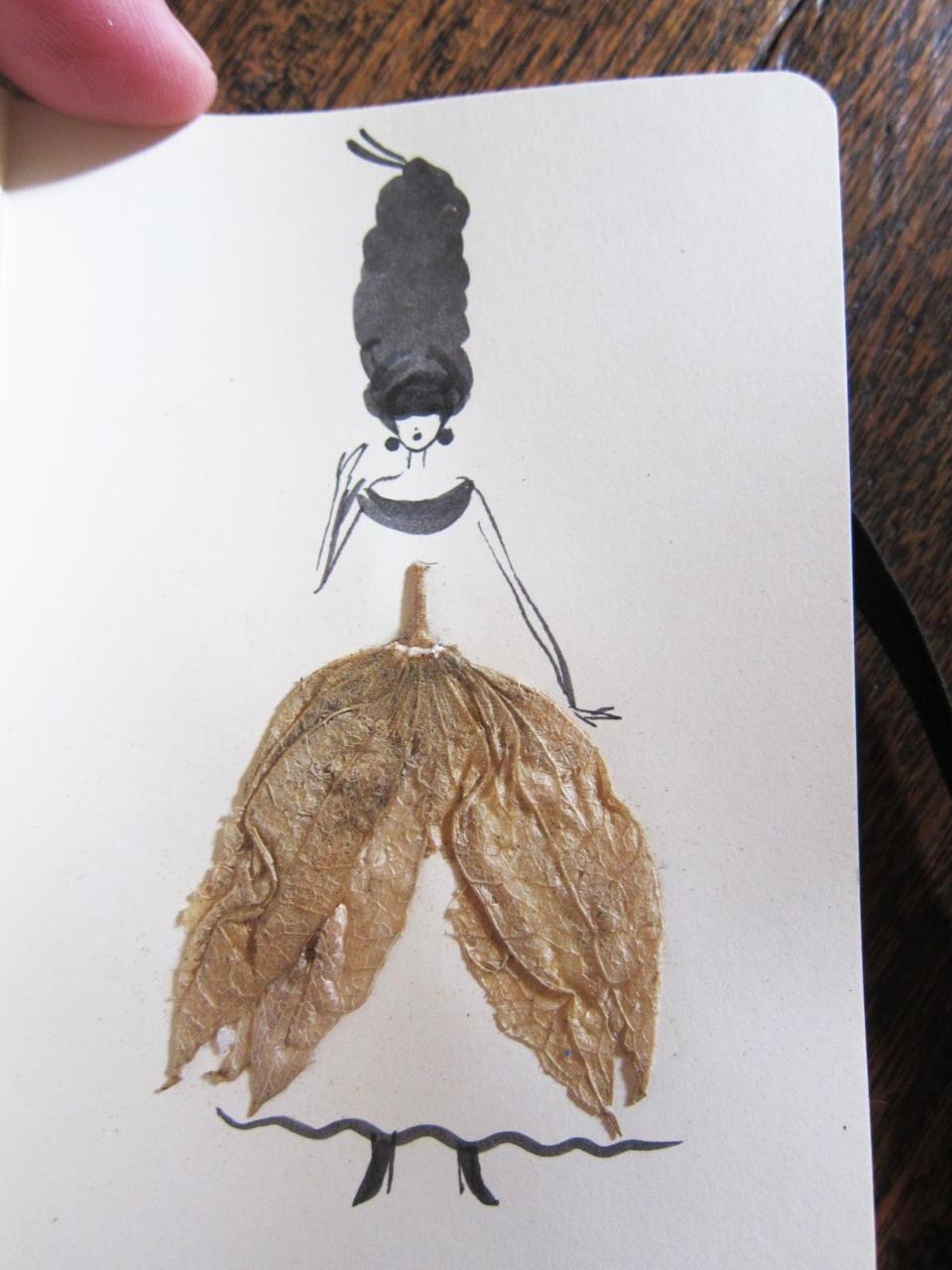 herbier feuille illustration 02 Un herbier illustré