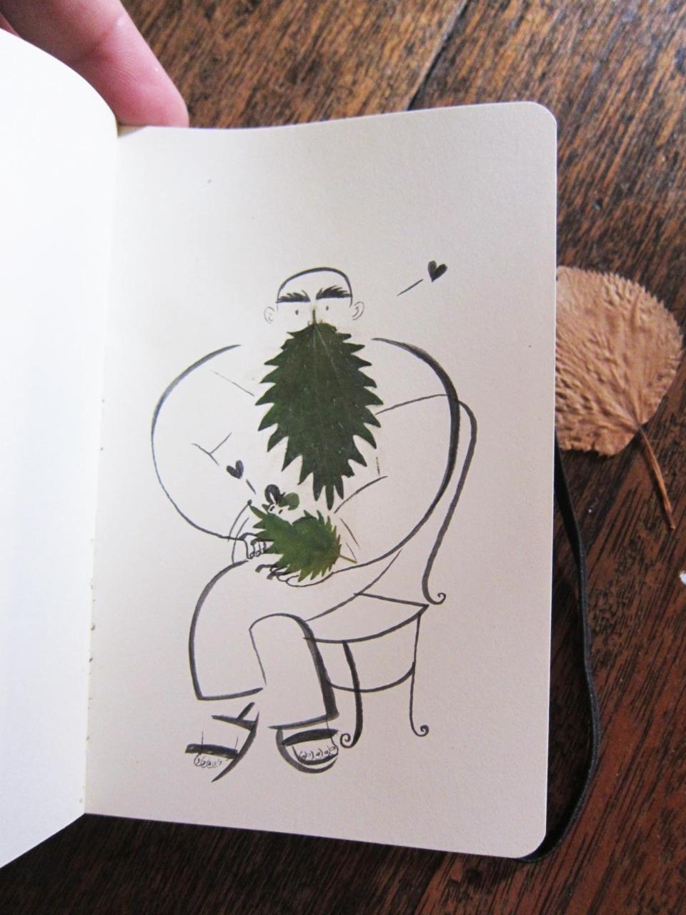 herbier feuille illustration 04 Un herbier illustré