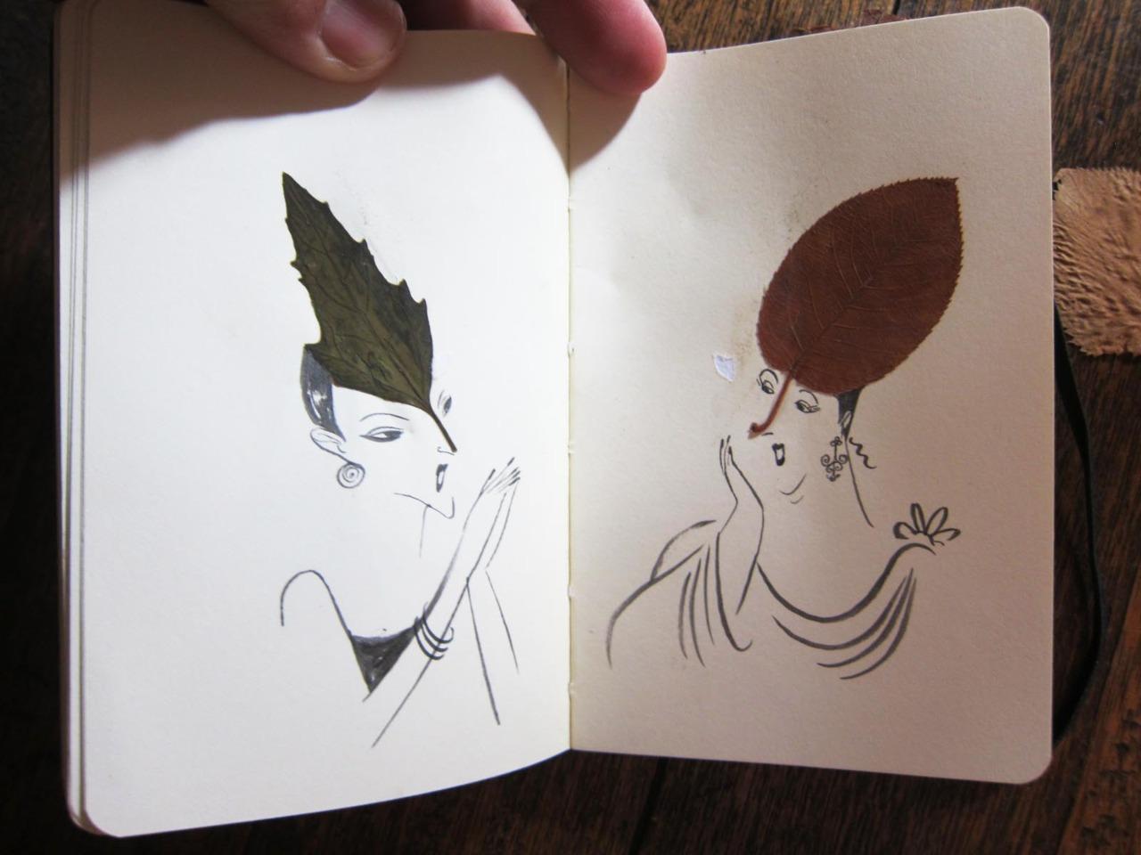 herbier feuille illustration 05 Un herbier illustré