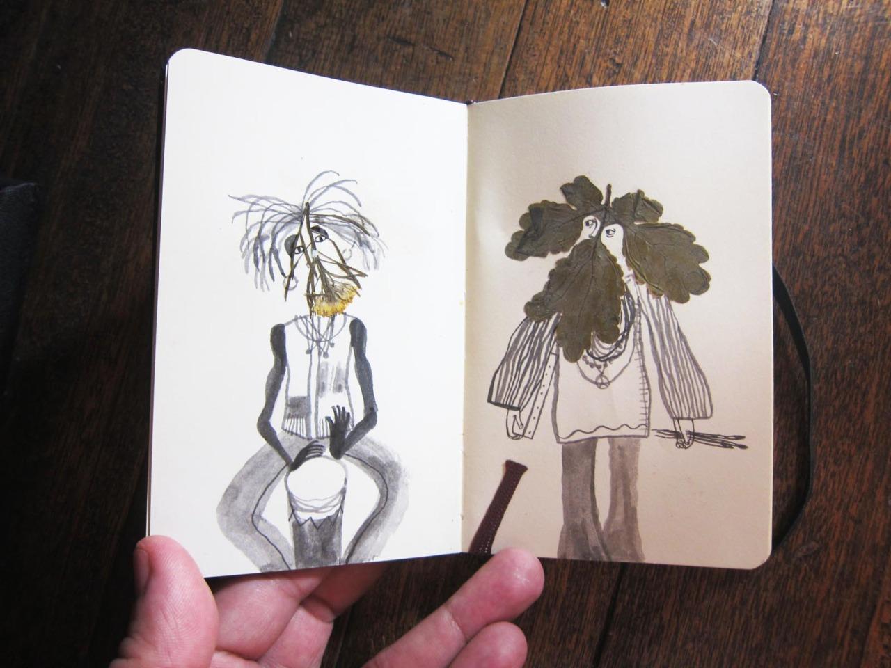 herbier feuille illustration 08 Un herbier illustré