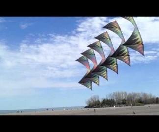 Démonstration de cerf-volants