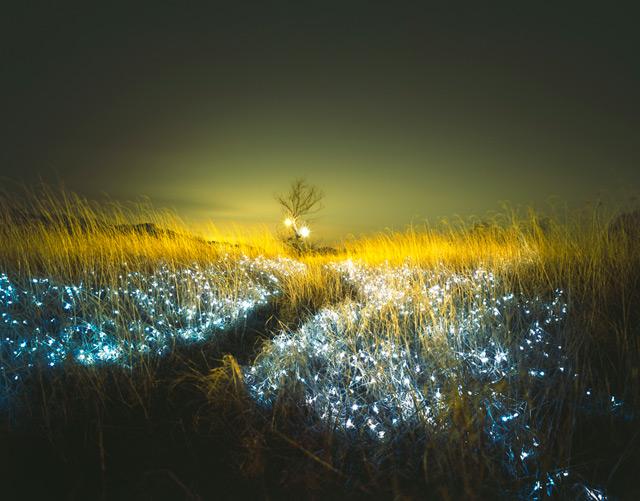 http://www.laboiteverte.fr/wp-content/uploads/2012/05/paysage-luminere-05.jpg