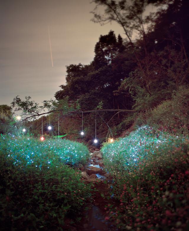 http://www.laboiteverte.fr/wp-content/uploads/2012/05/paysage-luminere-06.jpg
