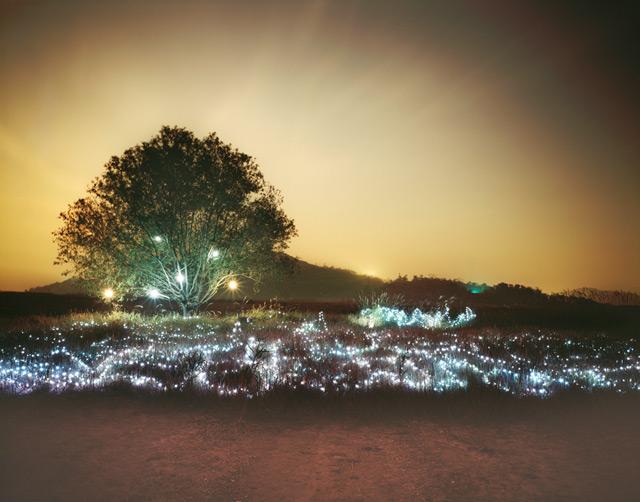 http://www.laboiteverte.fr/wp-content/uploads/2012/05/paysage-luminere-07.jpg