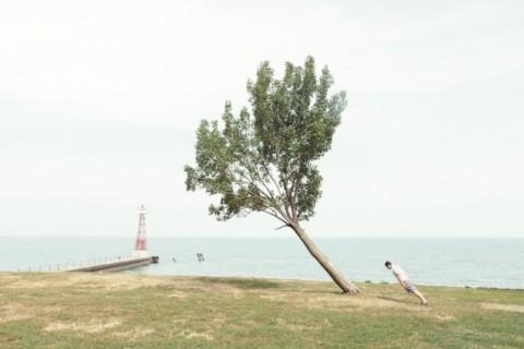 arbre-penche-01