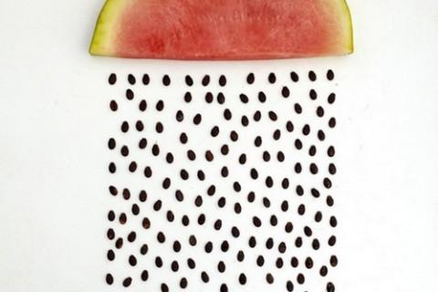 objet-fruit-01