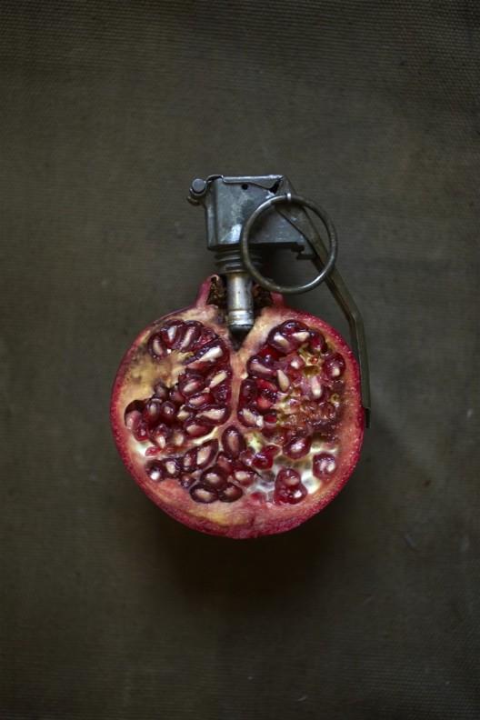 Fabuleux Les fruits détournés de Sarah Illenberger FJ91