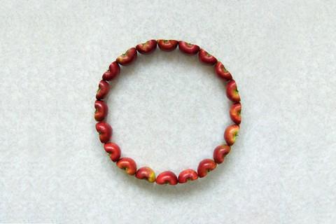 fruit-geometrique-01