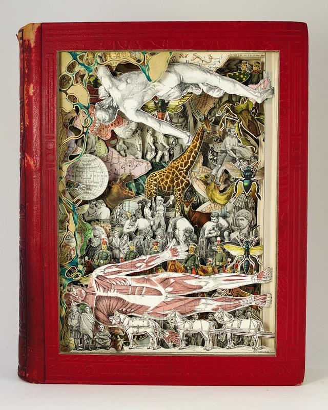 livre illustration 02 Des livres soulagés de leurs textes