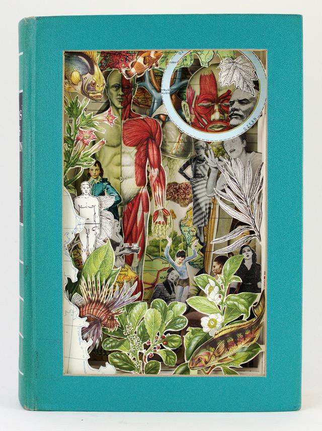 livre illustration 08 Des livres soulagés de leurs textes