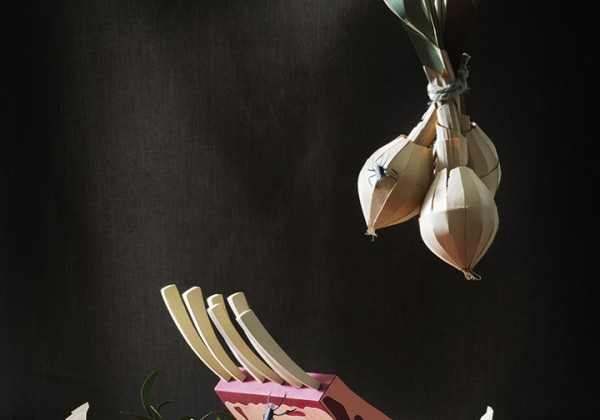 nature-morte-papier-photographie-01