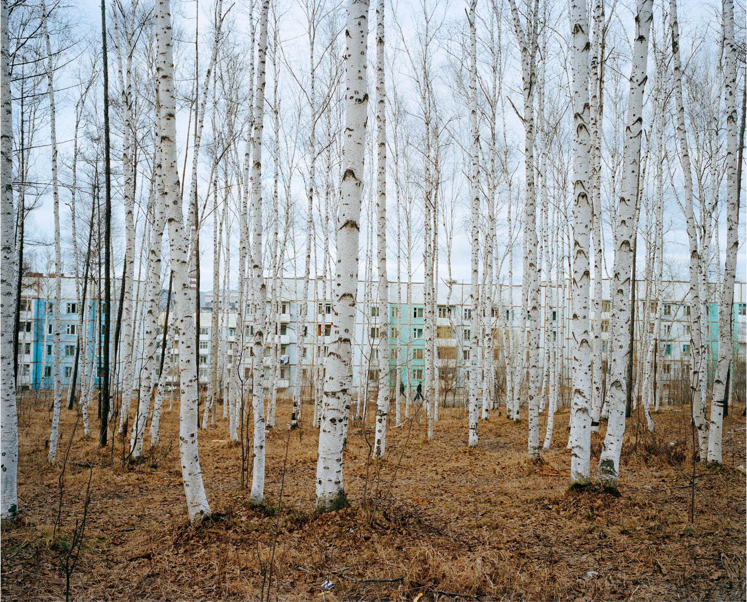 Les paysages de russie d 39 alexander gronsky for Le paysage