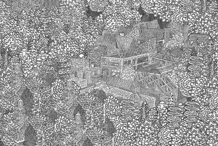dessin minutieu 05 720x483 Des dessins minutieux en noir et blanc
