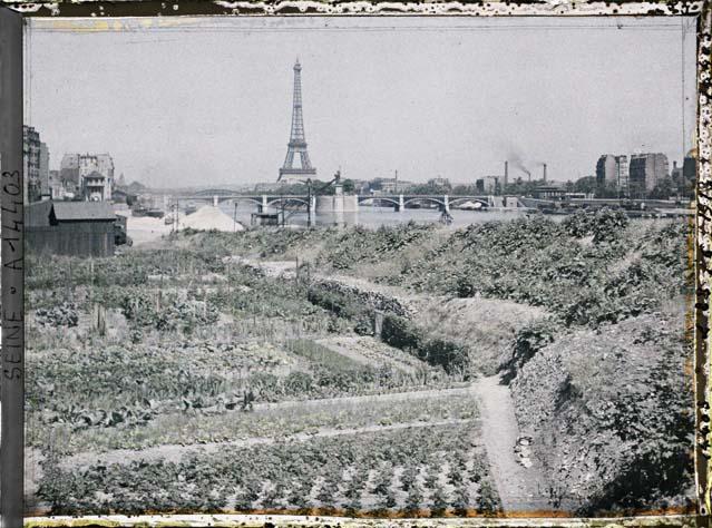Jardins potagers, quai d'Auteuil (actuel quai Louis-Blériot), en face le pont de Grenelle et la statue de la Liberté par Auguste Léon ©Musée Albert-Kahn - Département des Hauts-de-Seine
