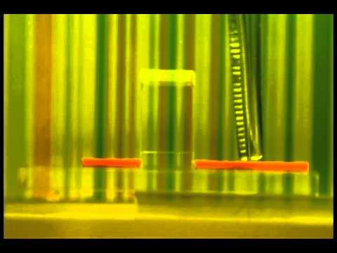 Démonstration d'un filtre d'invisibilité