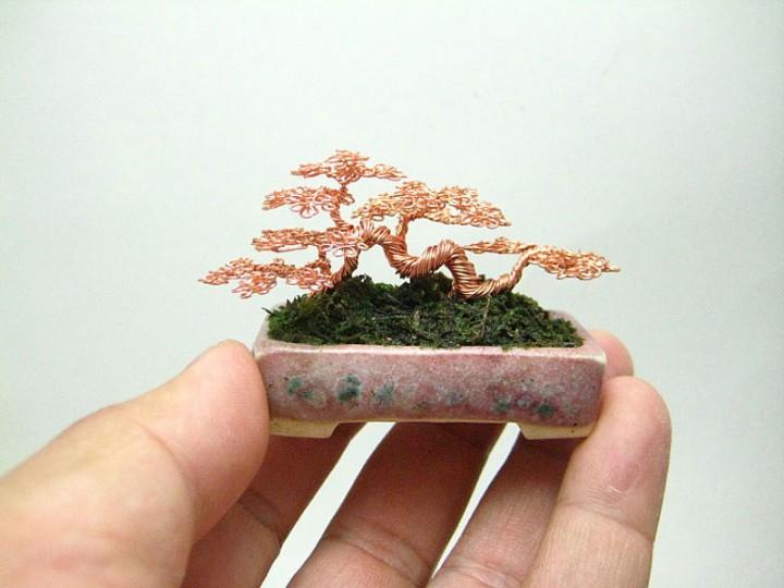 bonzai fil de fr er 09 720x540 Des bonsaïs en fil de fer  divers bonus art
