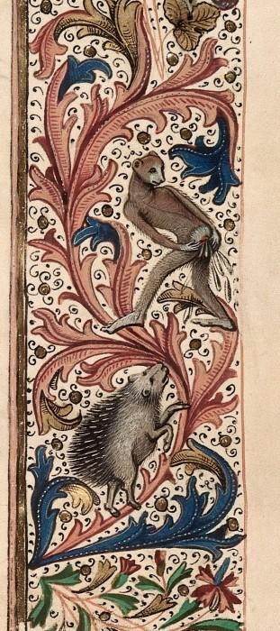 marginalia enluminure etrange moyen age 29 311x700 Des enluminures étranges au Moyen Age  peinture 2 histoire design bonus art