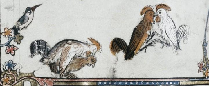marginalia enluminure etrange moyen age 44 720x299 Des enluminures étranges au Moyen Age  peinture 2 histoire design bonus art