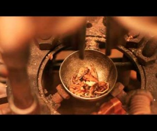 Une machine à casser les noix
