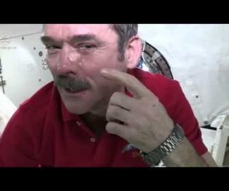 Personne ne t'entendra pleurer depuis l'espace