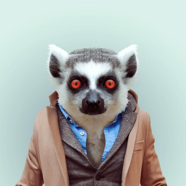portraits-animaux-habilles-03