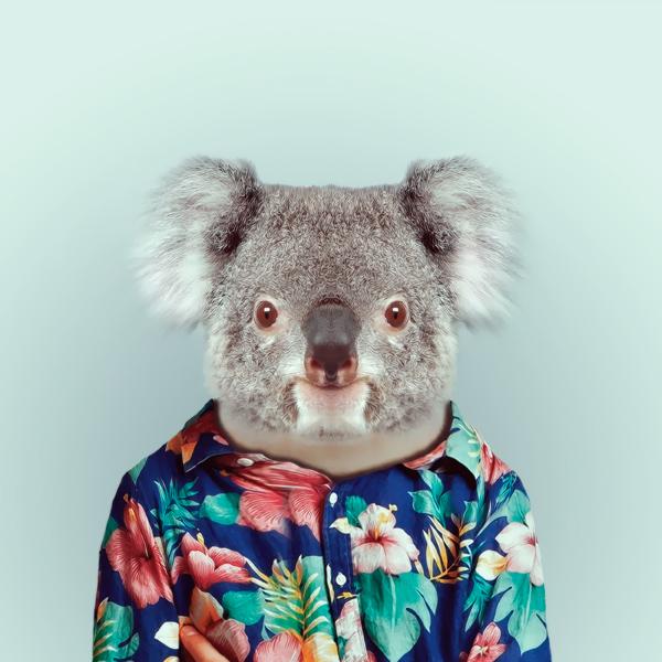 portraits-animaux-habilles-07