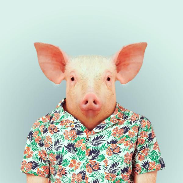 portraits-animaux-habilles-08