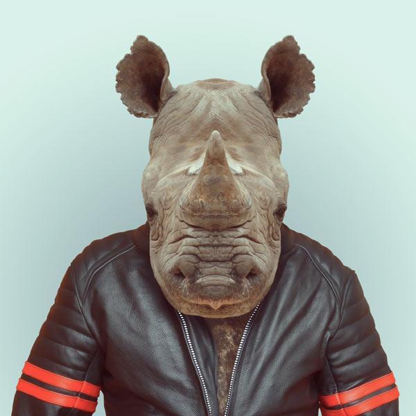 portraits-animaux-habilles-11