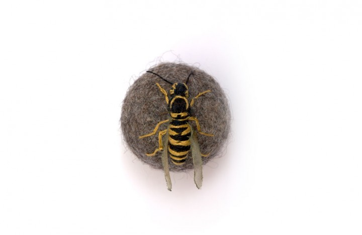 insecte-brode-boule-05