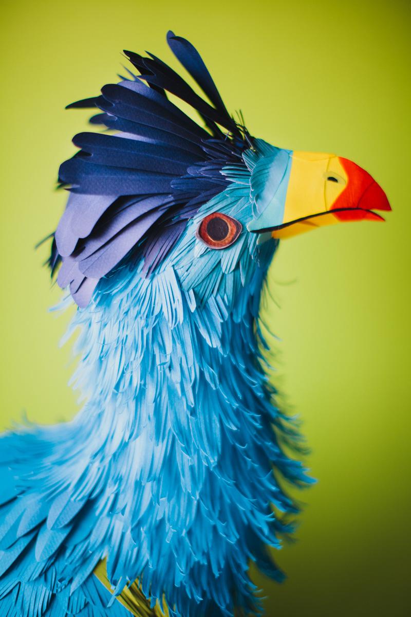 Des oiseaux en papier for Photo oiseau
