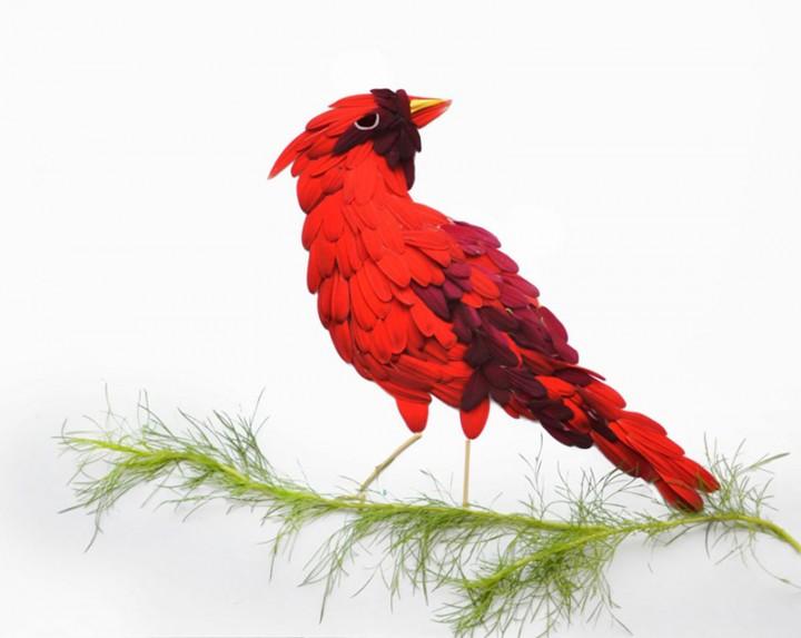 oiseau petale 01 720x573 Des oiseaux en pétales  divers bonus