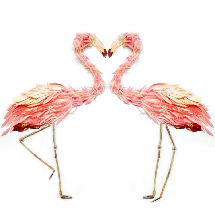 oiseau petale 04 700x700 Des oiseaux en pétales  divers bonus