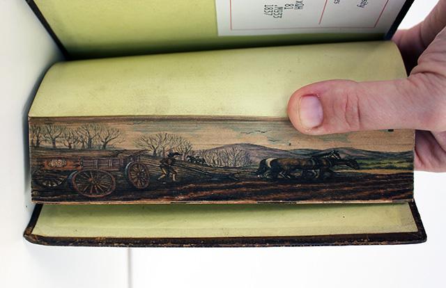Connu Des peintures cachées dans la tranche des livres ( 1650 - 1900 ) EW54