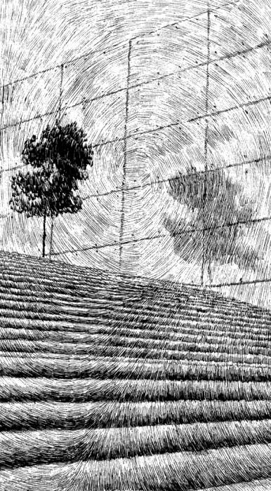 trait noir illustration 04 386x700 Empreintes en traits noirs  cinema 2 bonus