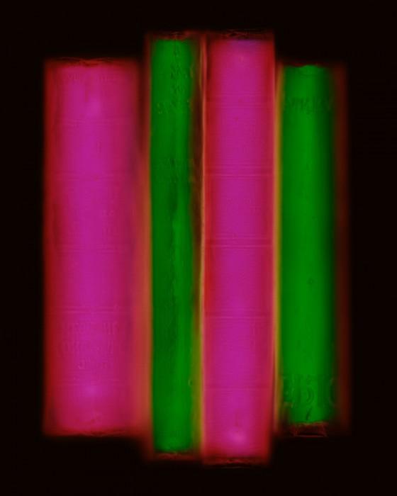 livre resine 05 560x700 Les livres multicolores de Penelope Davis  photographie bonus art