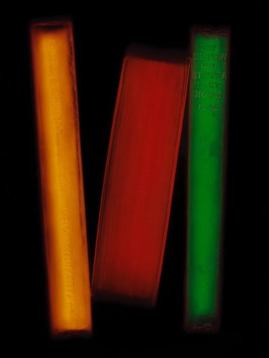 livre resine 08 525x700 Les livres multicolores de Penelope Davis  photographie bonus art