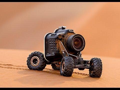 Un buggy radiocommandé pour photographier des lions