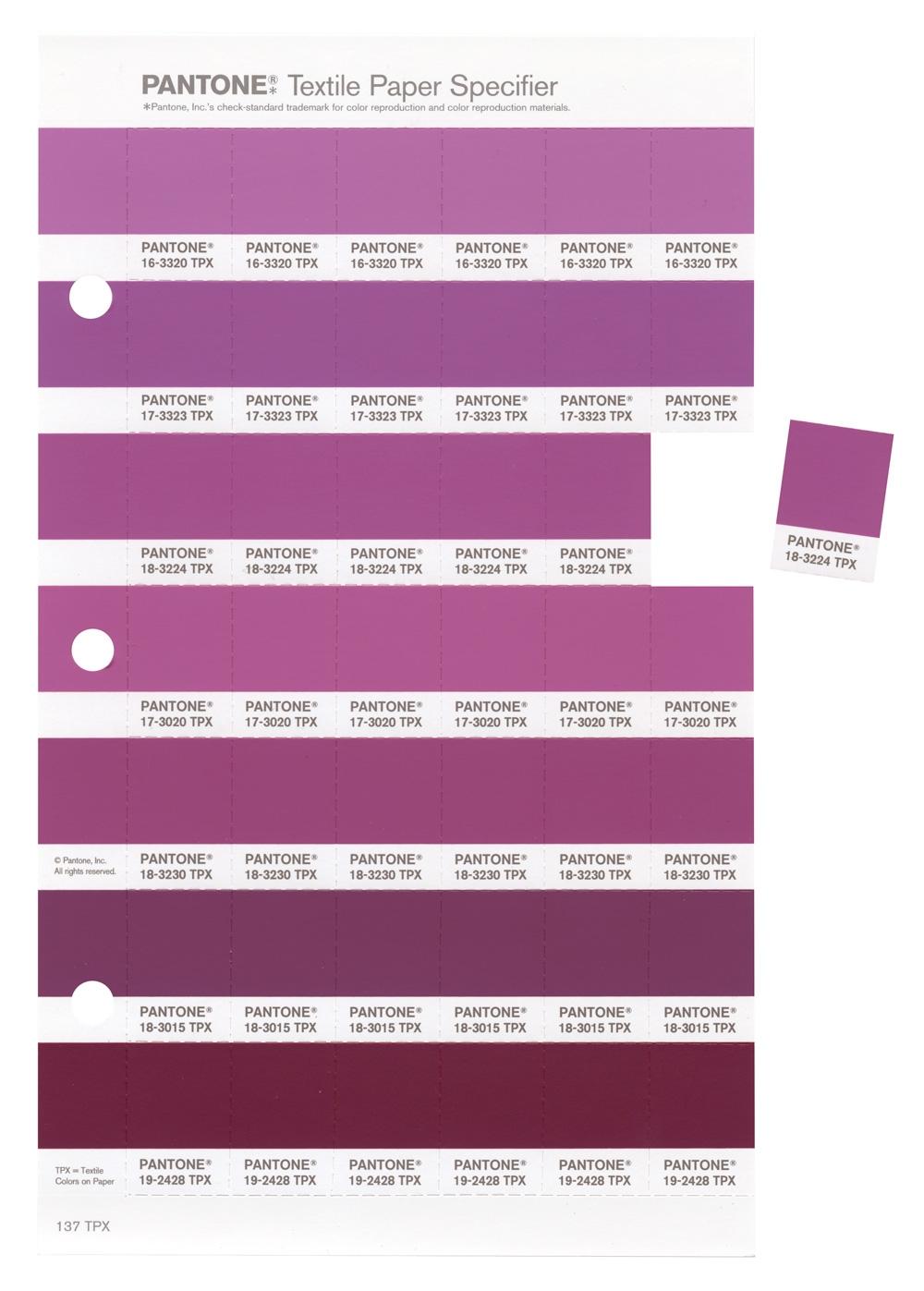 L 39 orchid e radieuse couleur pantone de l 39 ann e 2014 for Peinture pantone