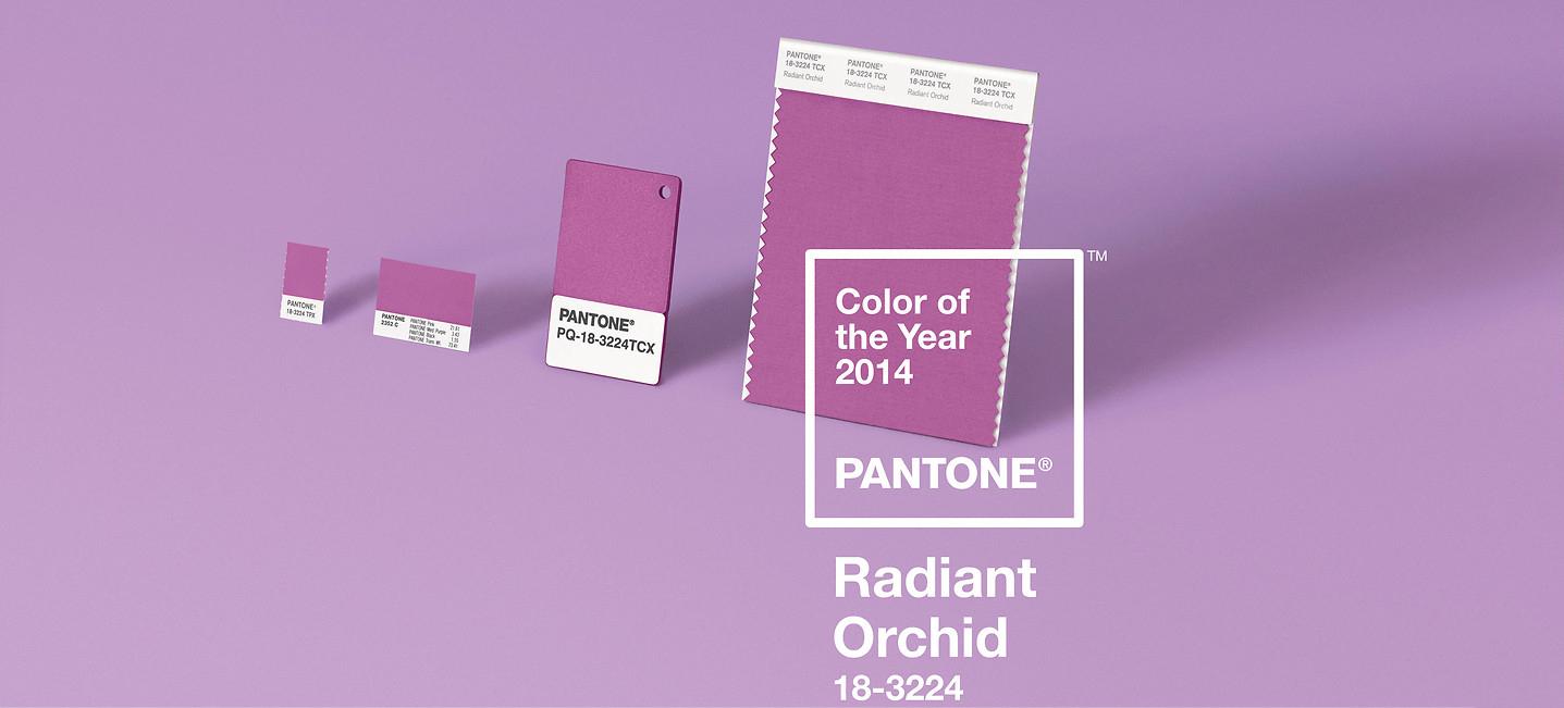 L 39 orchid e radieuse couleur pantone de l 39 ann e 2014 - Pantone couleur de l annee ...