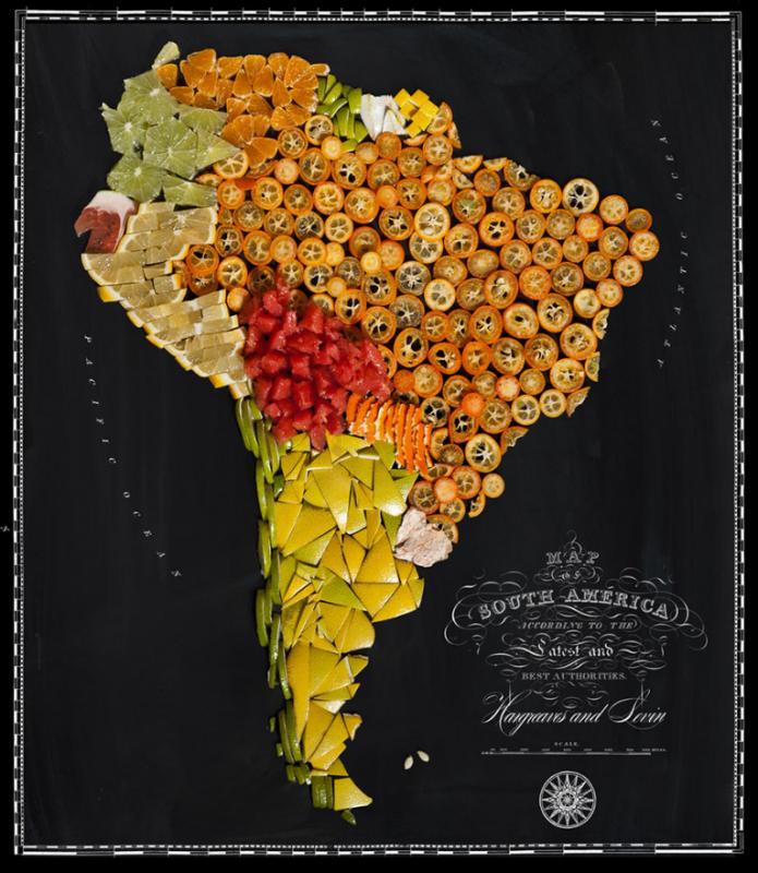 carte-aliments-01