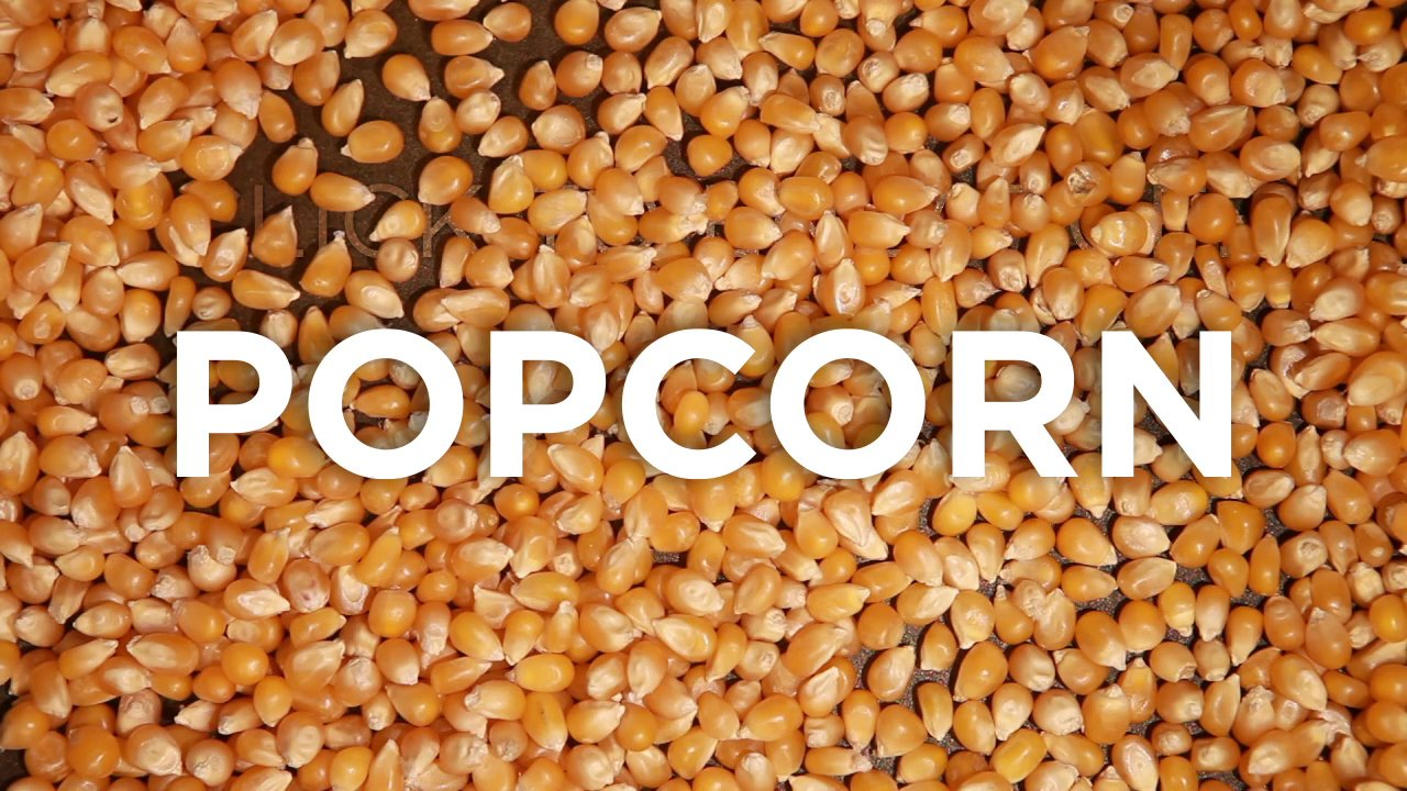 Tout sur le Pop Corn