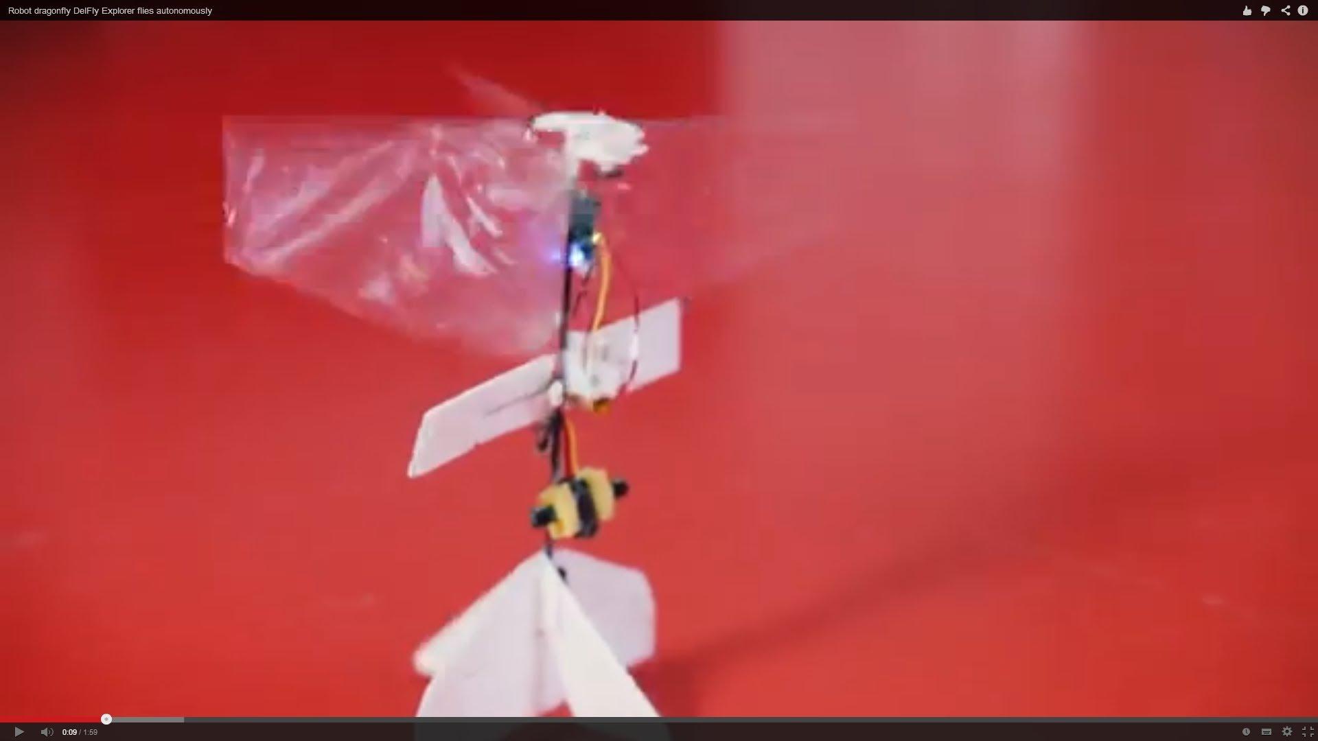 Une libellule robotique autonome de 20 grammes